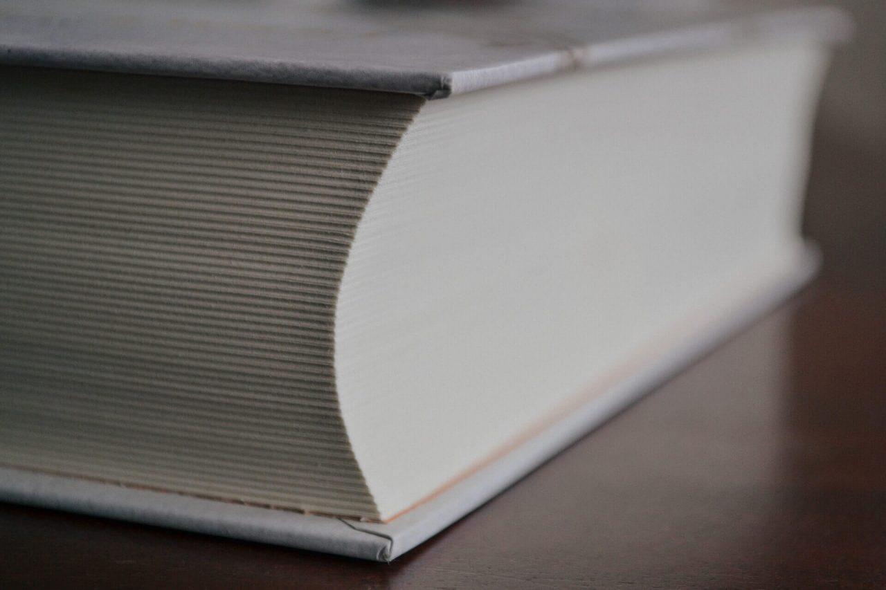 Veliki malčkov slovar